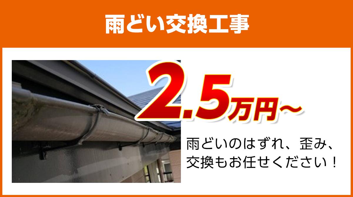 徳島県の雨どい交換工事料金 樹脂製、高耐久雨どい