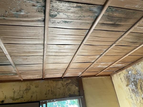徳島県阿南市 O様邸 雨漏り補修(屋根漆喰補修) 現地調査 雨漏りの怖さ (3)