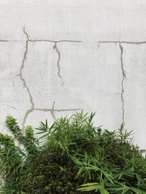 外壁塗装はいつがいい? 塗装に向いている時期について解説します (2)